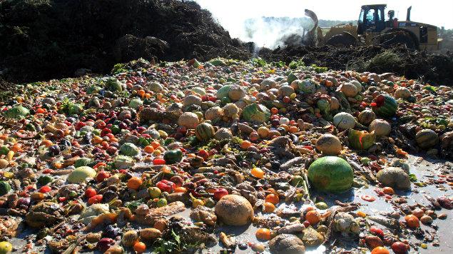 México desperdicia 20.4 millones de toneladas de comida cada año | El Imparcial de Oaxaca
