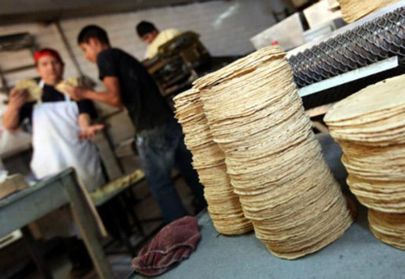Costo de la tortilla podría llegar hasta 17 pesos por kilo | El Imparcial de Oaxaca