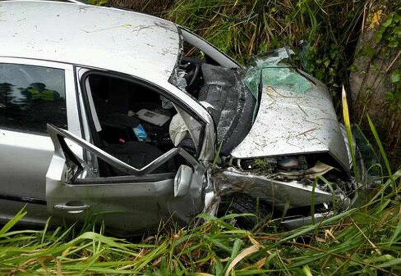 Conductor sale volando luego de chocar contra un árbol en carretera   El Imparcial de Oaxaca