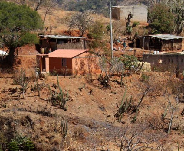 Buscan acabar con proliferación de  núcleos en población irregulares de Tuxtepec, Oaxaca