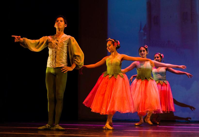 danza conferencias y artes visuales en la cco