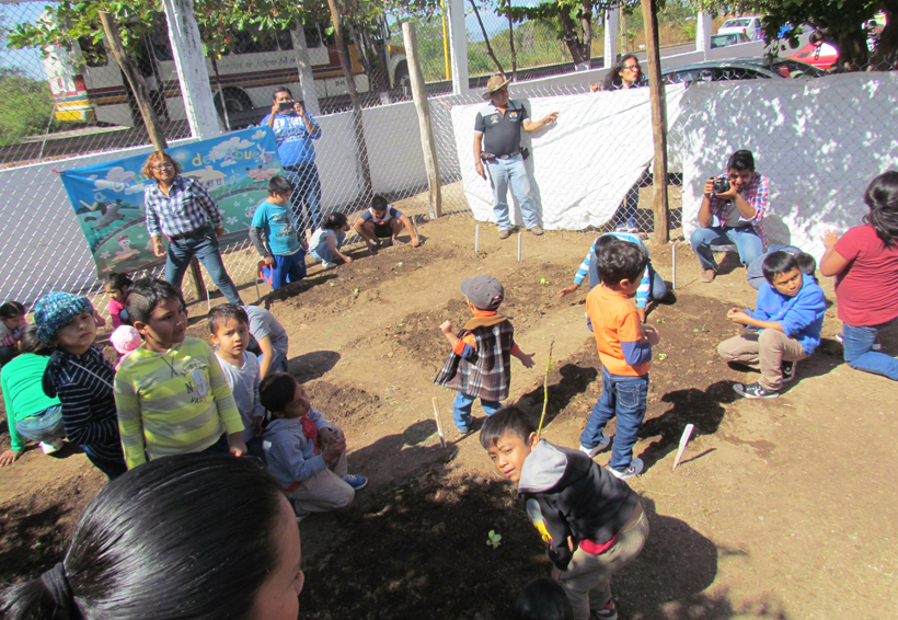 Niños de Juchitán aprenden a cultivar  en huertos escolares