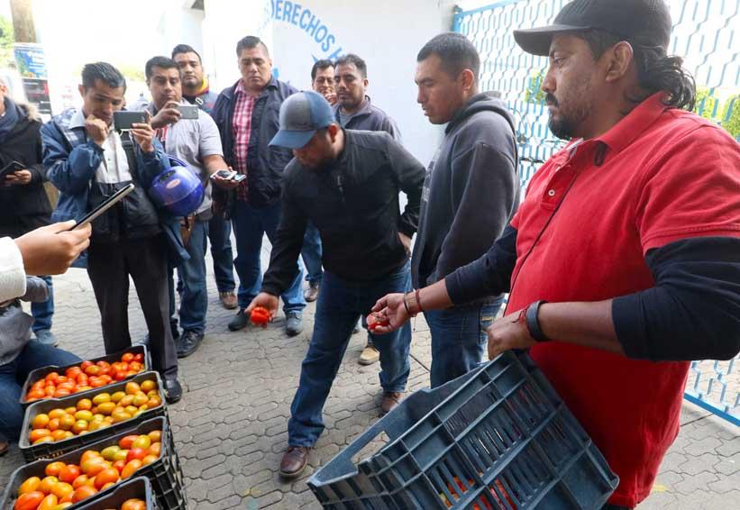Plantean en Oaxaca censo de vendedores  de tomate