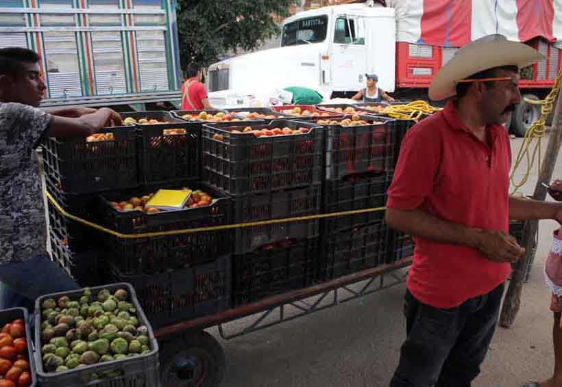 Regresan tomateros  a playón del río Atoyac en Oaxaca