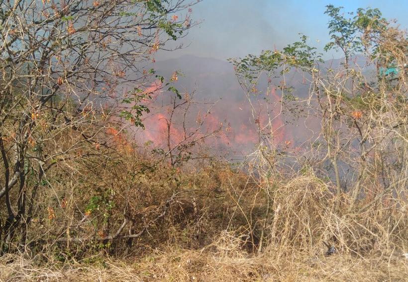 Vecinos de Ixtepec se alarman por incendio