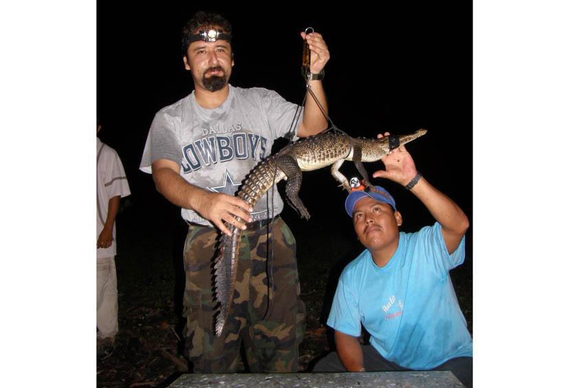 Pinotepa, primer lugar en ataques de cocodrilo