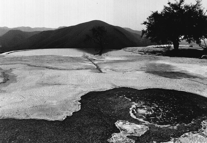Lucero González aborda con fotografía el origen de la vida