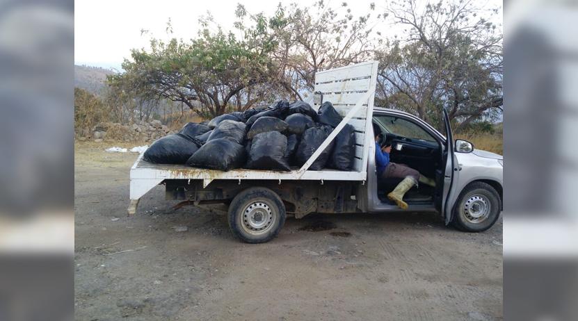 Los cachan tirando bolsas con vísceras de pollo en Monte Albán | El Imparcial de Oaxaca