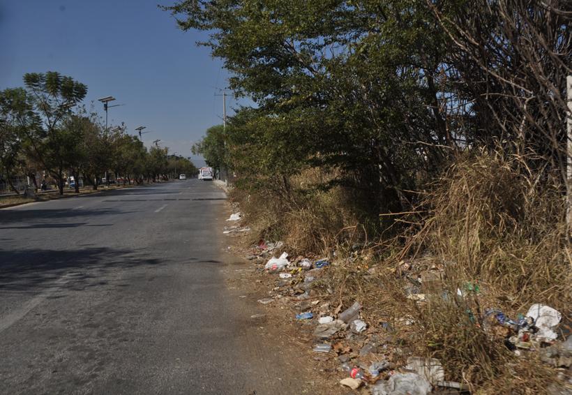 Prioriza San Sebastián Tutla obras en educación y vivienda | El Imparcial de Oaxaca