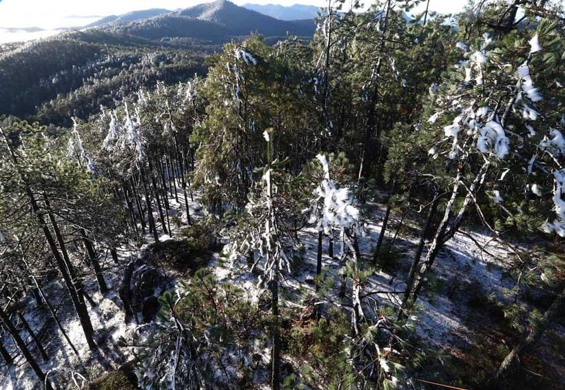 Llega nuevo frente frío; impactará en zonas altas de Oaxaca | El Imparcial de Oaxaca