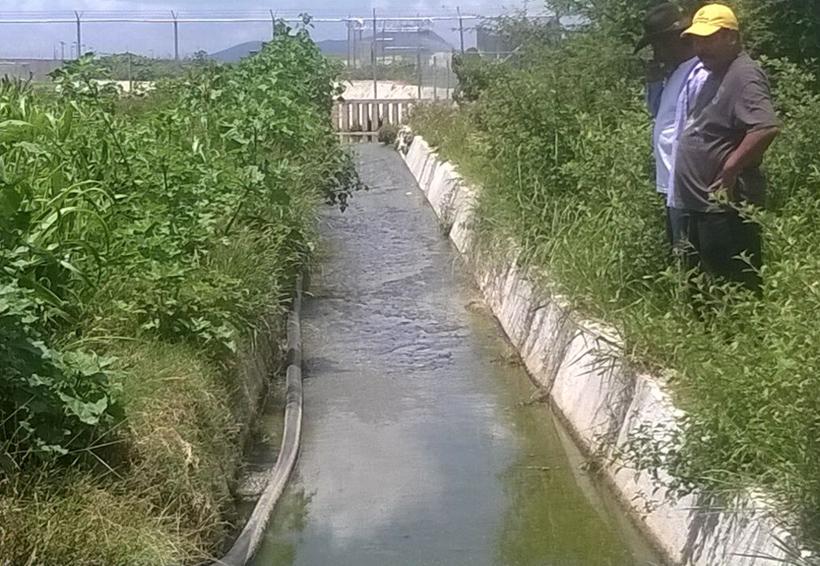 Necesario, tecnificar el campo oaxaqueño | El Imparcial de Oaxaca