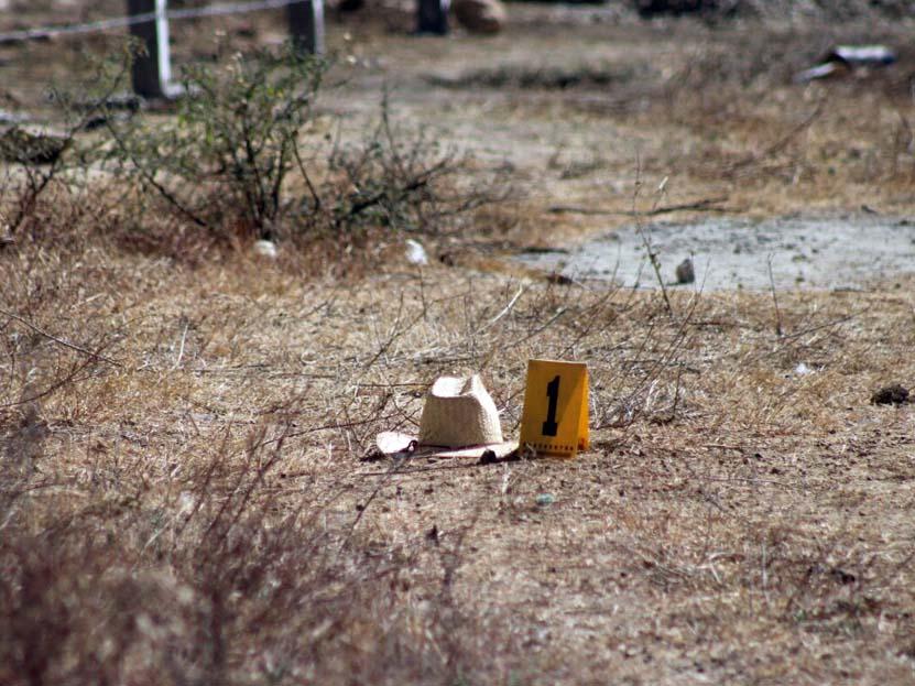 Lo devoraban los perros en San Bartolo Coyotepec, Oaxaca | El Imparcial de Oaxaca