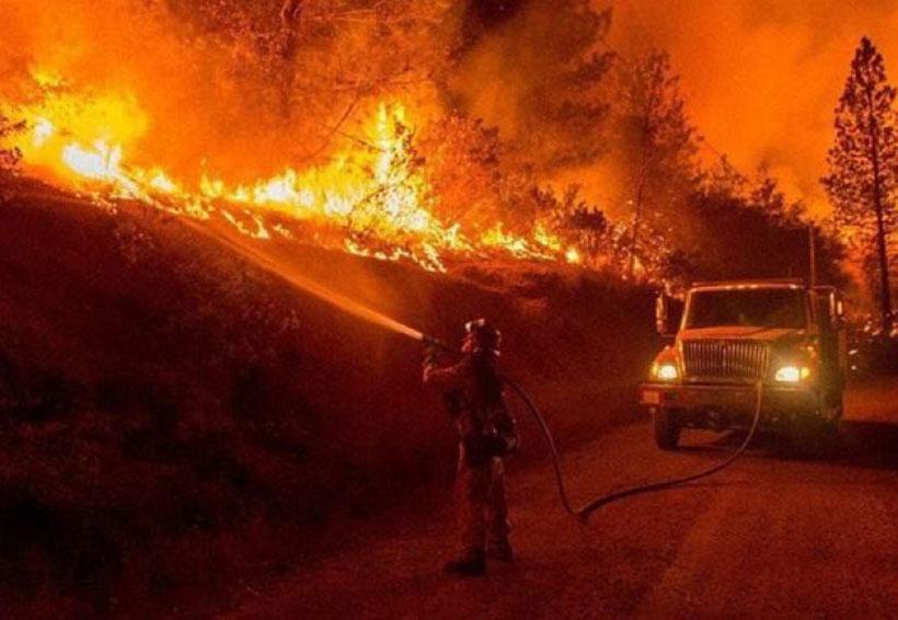 Bajaron 18 % los incendios forestales en enero: Conafor | El Imparcial de Oaxaca