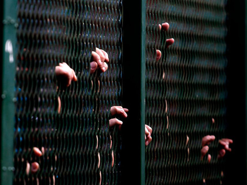 A prisión por robo específico y abigeato en Oaxaca | El Imparcial de Oaxaca