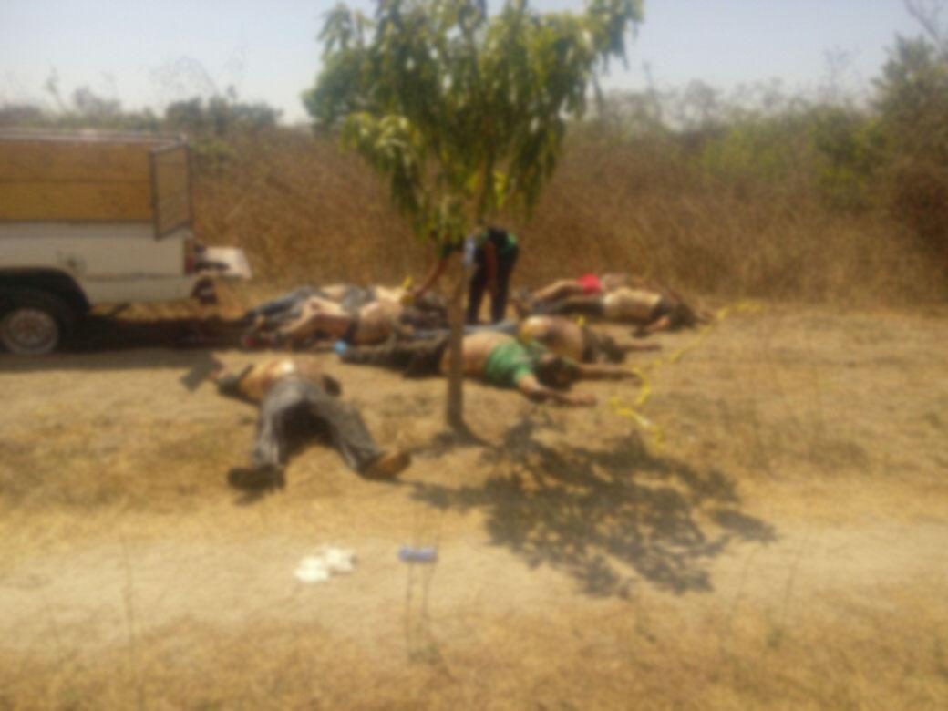 Masacre; Aparecen ocho cuerpos en paraje de Zanatepec, Oaxaca | El Imparcial de Oaxaca