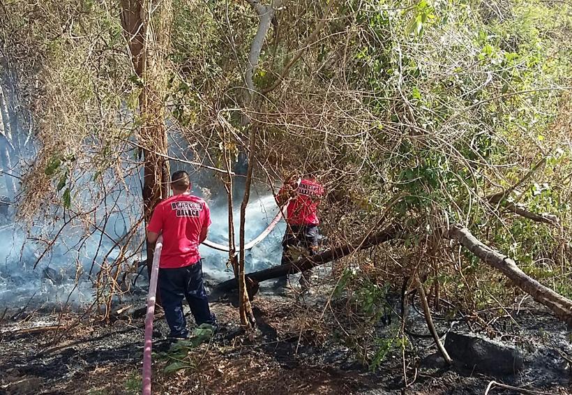 Combaten Bomberos otro incendio  forestal, ahora en La Herradura