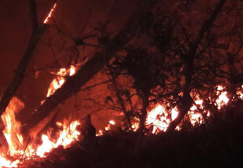 Incontenible, incendio en la Sierra Juárez de Oaxaca | El Imparcial de Oaxaca