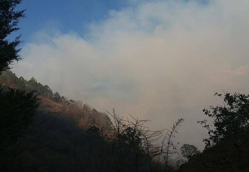 Incendio en la Sierra Juárez de Oaxaca afectó extensa área boscosa | El Imparcial de Oaxaca