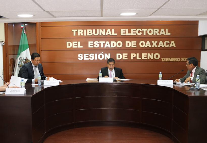 Ratifica TEEO que ediles pueden ser candidatos | El Imparcial de Oaxaca
