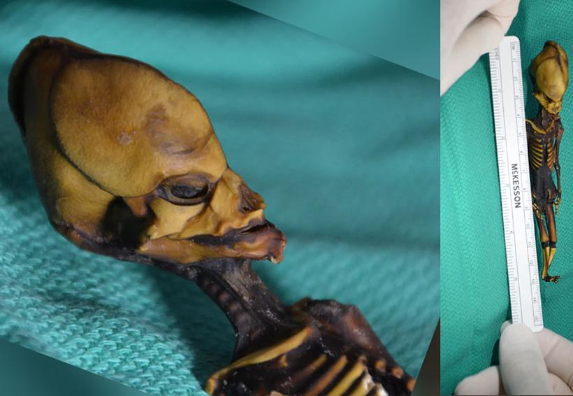 La tragedia de 'alien' de Chile fue develada   El Imparcial de Oaxaca