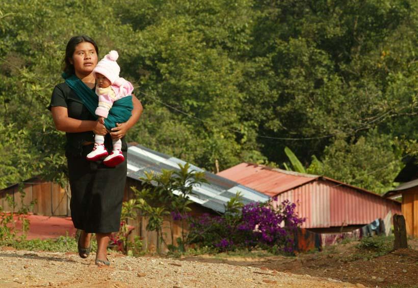 Cambio climático afecta la seguridad alimentaria en Oaxaca | El Imparcial de Oaxaca