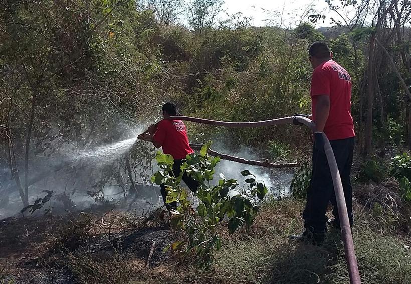 Se incendia cerro  en Hacienda Vieja, Oaxaca