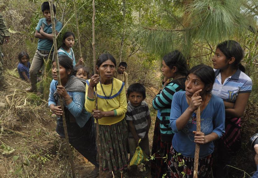 Utilizan a menores en siembra de amapola y mariguana en Oaxaca | El Imparcial de Oaxaca