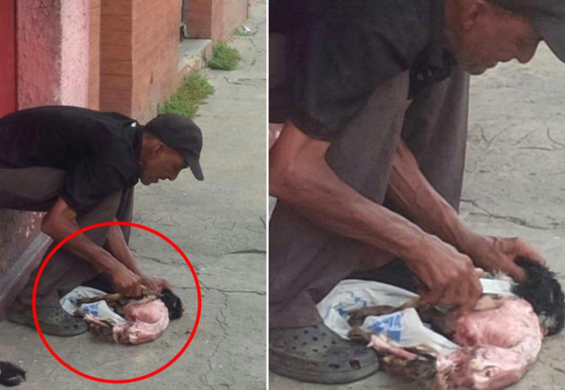 Hombre devora perro por hambre en Venezuela | El Imparcial de Oaxaca
