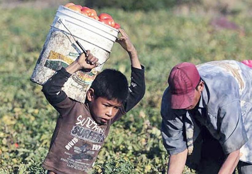 Necesario, abatir el trabajo infantil en Oaxaca | El Imparcial de Oaxaca