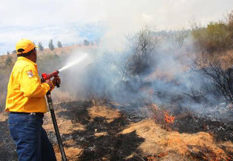 Vigilan municipios de Oaxaca que son propicios para incendios | El Imparcial de Oaxaca