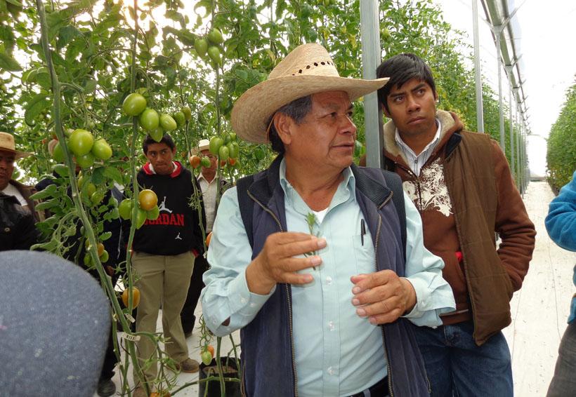 Analizarán propuesta  para incentivar la  agricultura en San Miguel Tulancingo, Oaxaca   El Imparcial de Oaxaca