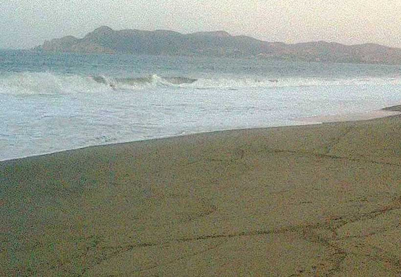 Descartan contaminación en playas del Istmo de Oaxaca