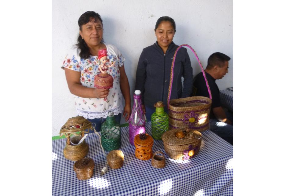 Buscan mujeres  consolidar proyecto  de artesanías de pino en Oaxaca | El Imparcial de Oaxaca