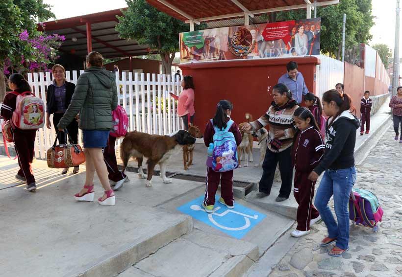 Desoyen maestros a su dirigencia en Oaxaca | El Imparcial de Oaxaca