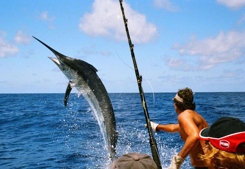 A pescar se ha dicho en Bahías de Huatulco | El Imparcial de Oaxaca