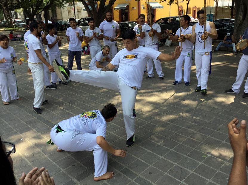 Festejan 17 años de Capoeira en Oaxaca | El Imparcial de Oaxaca