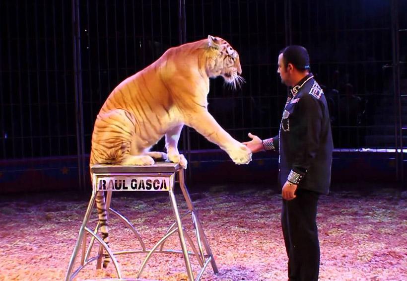 El circo, una diversión del pasado | El Imparcial de Oaxaca