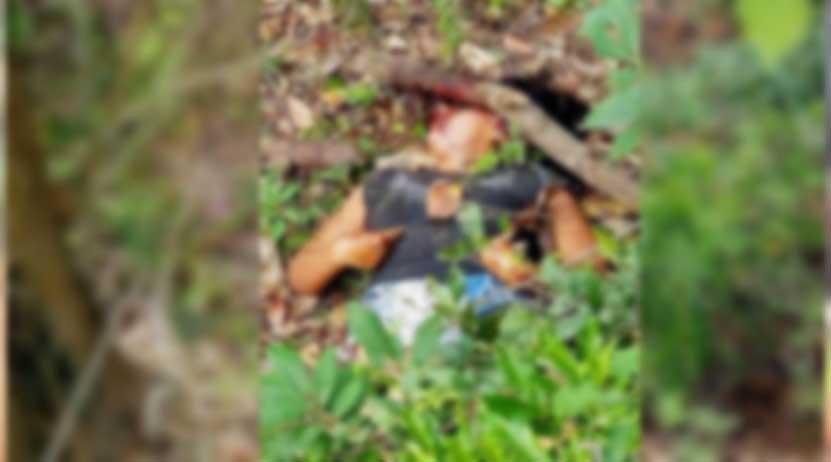 Cae presunto autor  de un feminicidio en Cosolapa | El Imparcial de Oaxaca