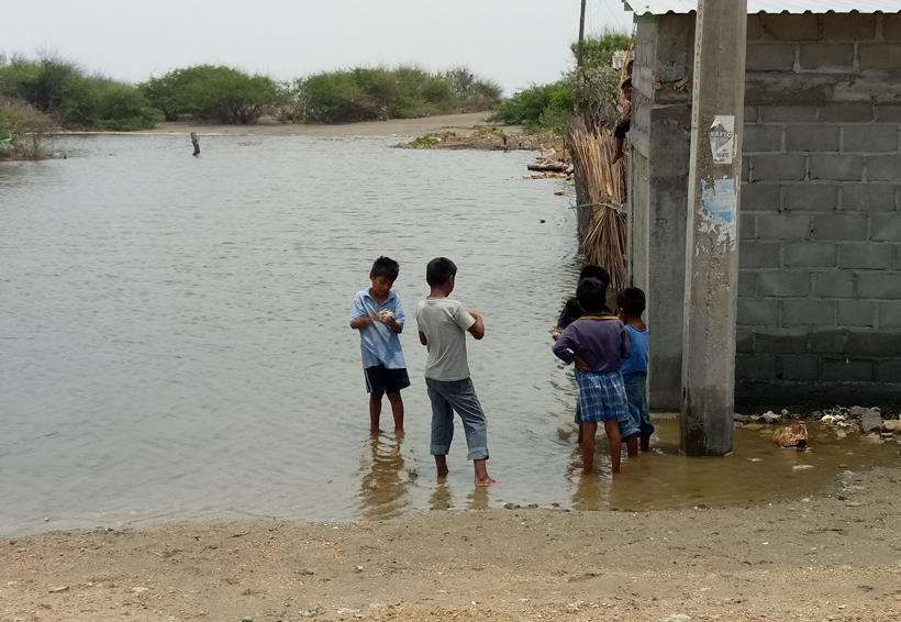 Mar de fondo deja  daños menores en el Istmo de Oaxaca