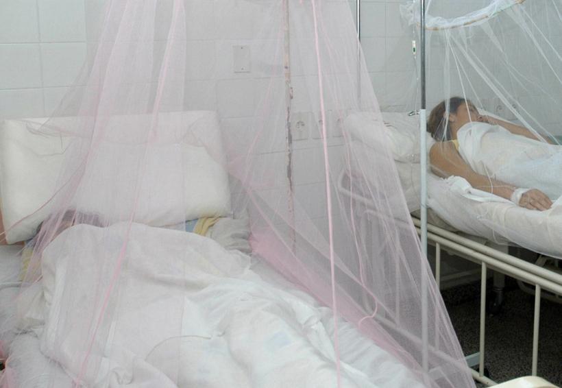 Alerta por posible brote de dengue en Tuxtepec, Oaxaca | El Imparcial de Oaxaca