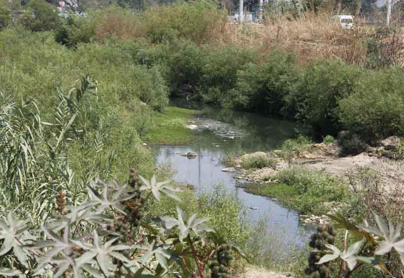 Río Atoyac requiere proyecto integral para reverdecer: INSO | El Imparcial de Oaxaca