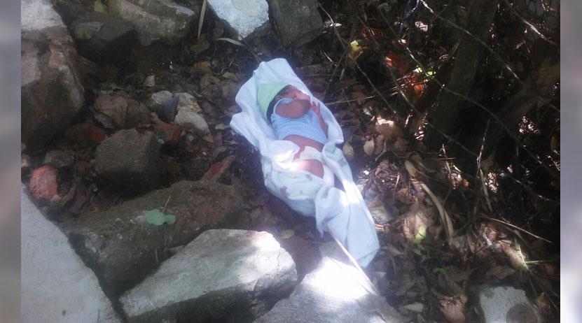 Encuentran bebé abandonado en Santa María Colotepec, Oaxaca   El Imparcial de Oaxaca