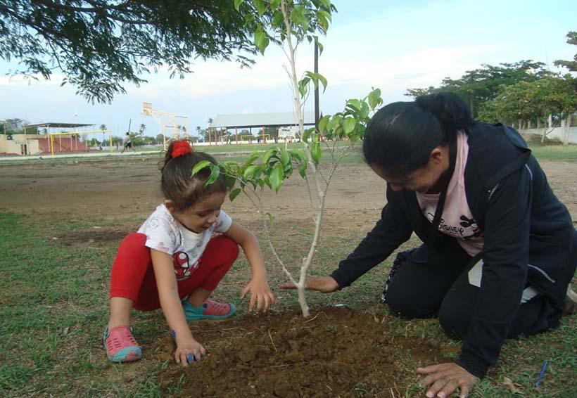 """Lanzan campaña """"Siembra  un árbol, cosecha un libro"""""""