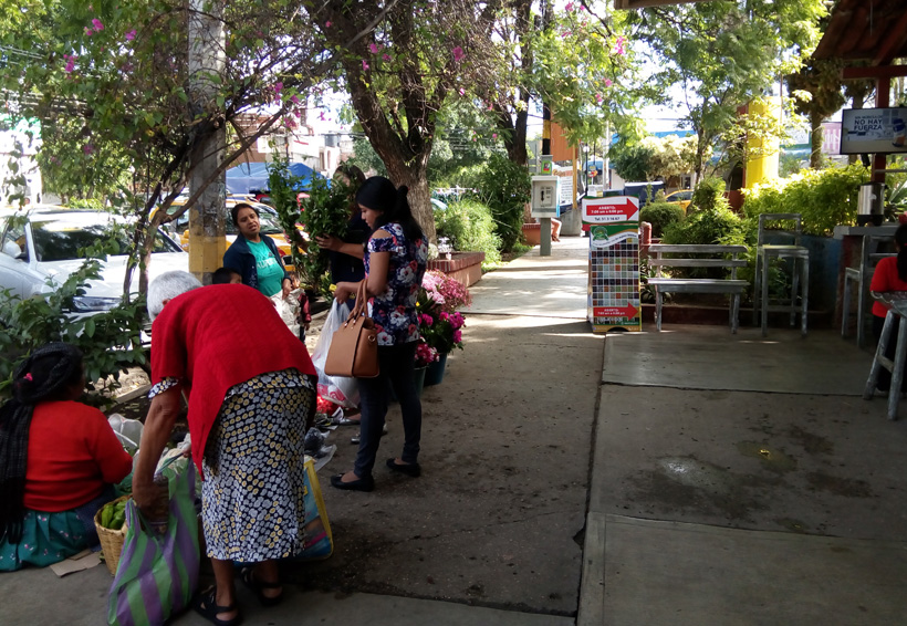 Piden atender el problema del comercio ambulante en Oaxaca   El Imparcial de Oaxaca