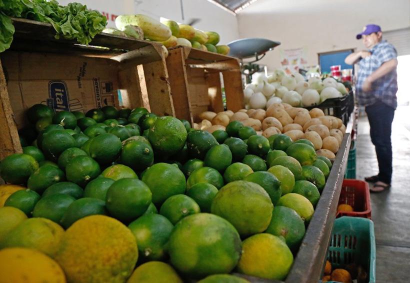 Vuelven variaciones en precios de agroproductos de consumo | El Imparcial de Oaxaca