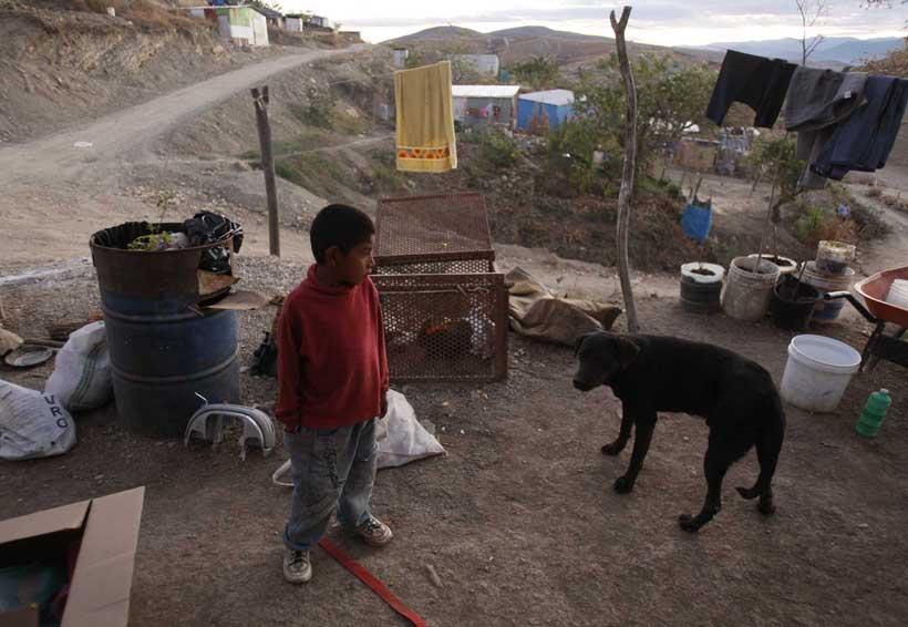 Pobreza detona consumo de drogas en Oaxaca | El Imparcial de Oaxaca