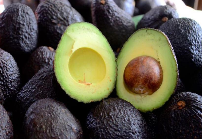 En Oaxaca se incrementa a  60 pesos el kilo  de aguacate hass   El Imparcial de Oaxaca