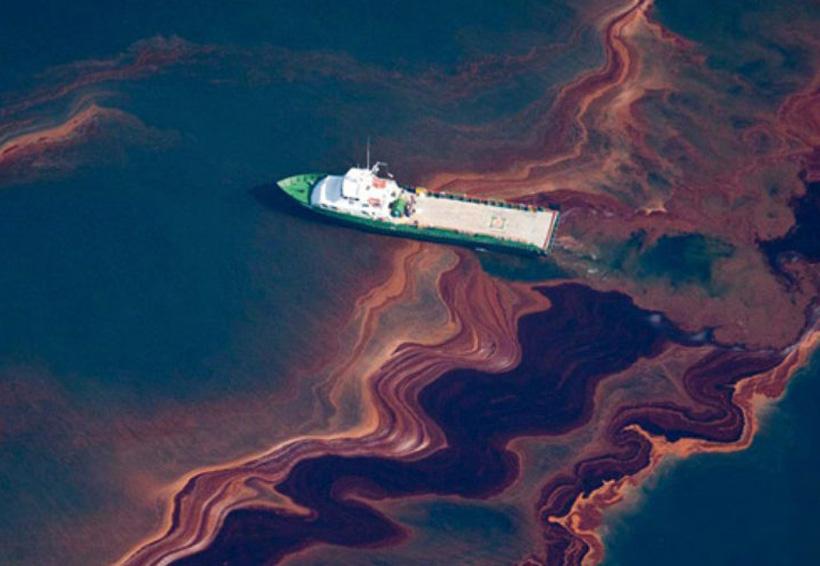 A ocho años de derrame petrolero, peces ya se recuperan en el Golfo | El Imparcial de Oaxaca