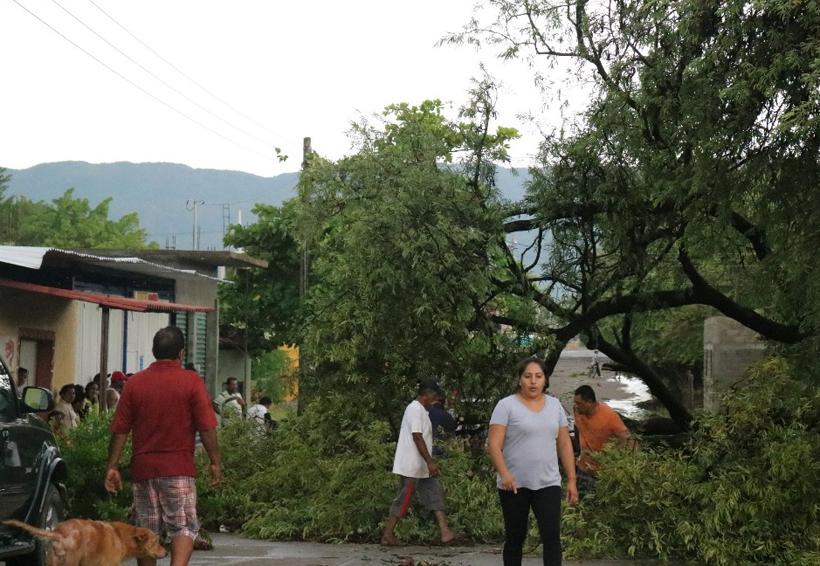 Granizada y lluvias deja onda tropical en Oaxaca
