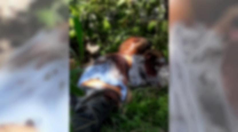 Asesinado a escopetazos en Jamiltepec, Oaxaca | El Imparcial de Oaxaca
